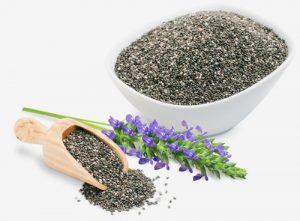 چیا (نام انگلیسی: Chia) گیاهی یک ساله از خانواده نعناعیان است. این گیاه را برای مصرف دانه آن می کارند، گرچه خود گیاه کاربرد تزئینی هم دارد.